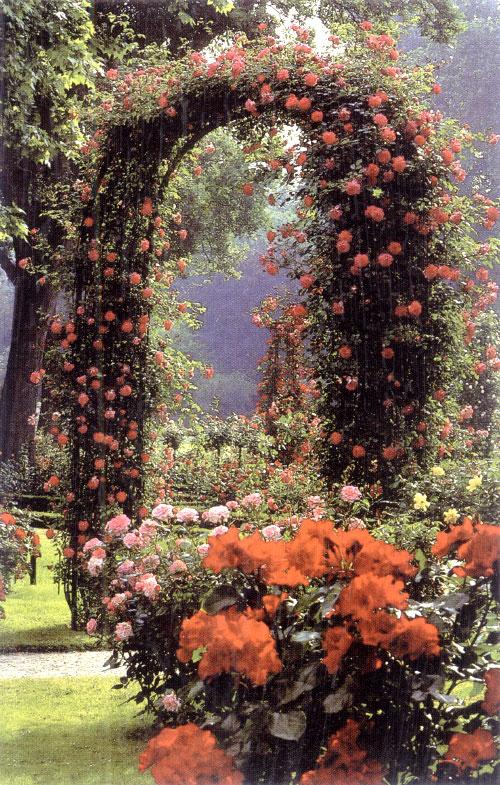Rosenboegen rosenlauben und rankgitter for Hornbach dekoration