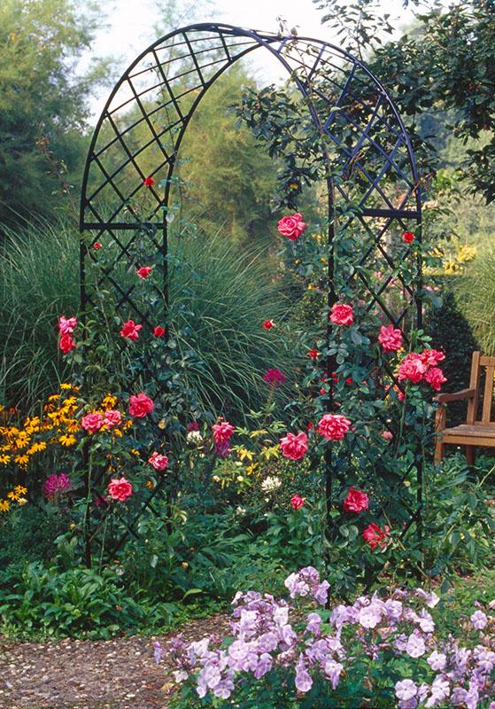 Lieblings Rosenbogen aus Metall in verschiedenen Ausführungen #VS_55